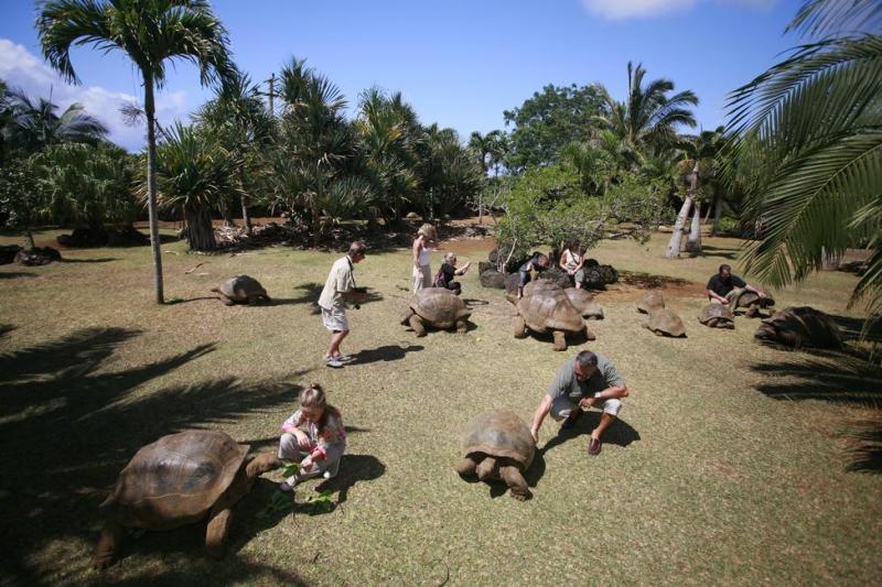 vanilla crocodile & tortoise park mauritius