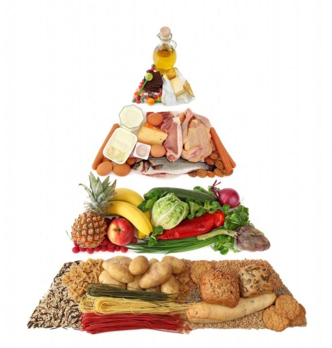 fitness food plan