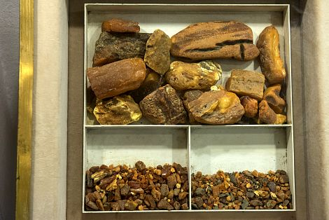 amber pieces in amber museum kaliningrad russia