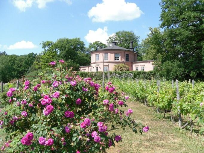 rosendal's garden stockholm