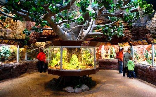 the skansen open air museum - natural exhibitions