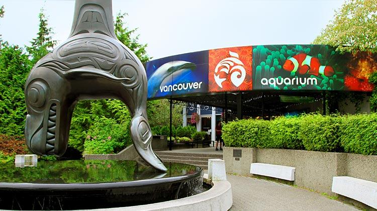 Vancouver Aquarium A Perfect Site For Marine Tourism Travhost