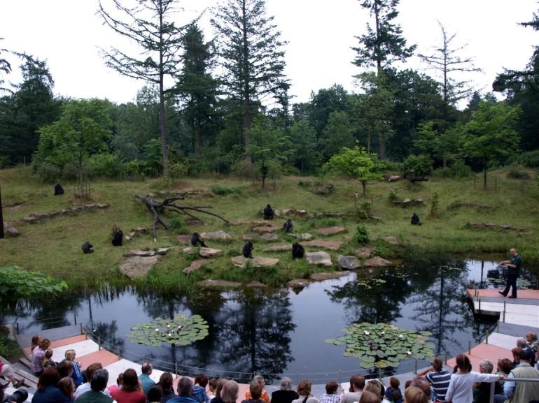 Apenheul Primate Park Netherlands