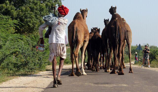 half day at rao ji ka hata road udaipur